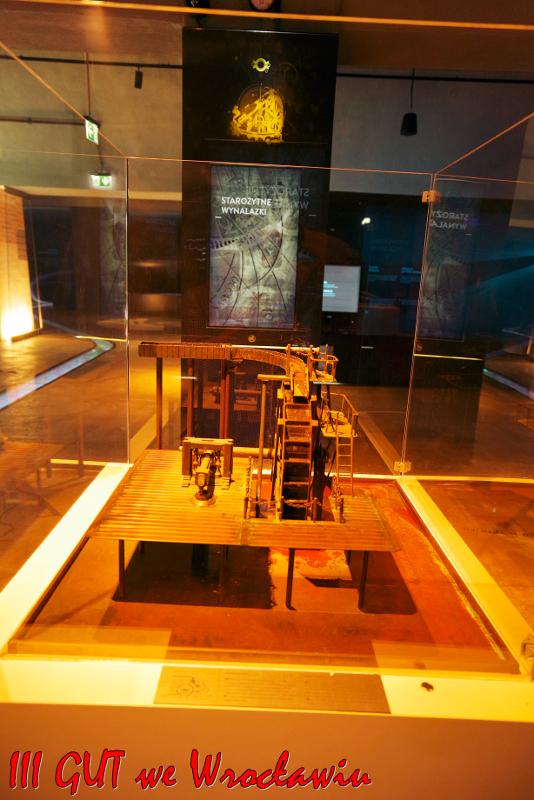 Najciekawsze eksponaty we wrocławskim Planteraium